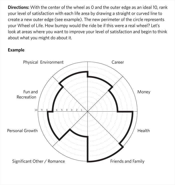 Wheel Of Life Exercise Sapere Life Coaching Brighton Sussex